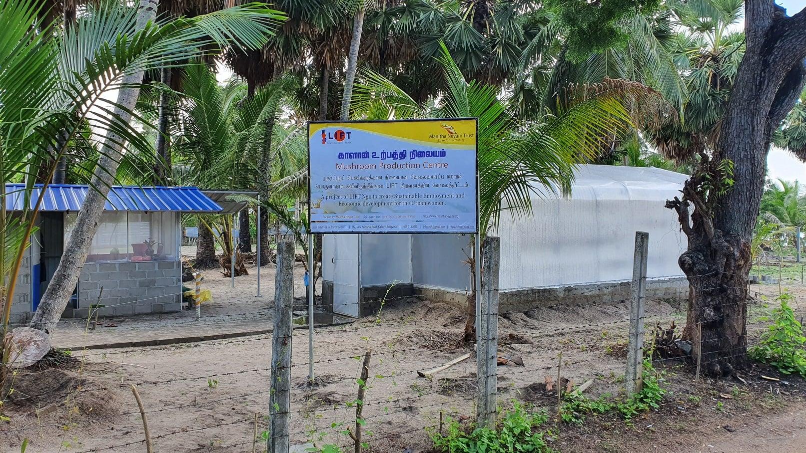 MNT-LIFT Mushroom Production Centre, Battiocaloa – 2