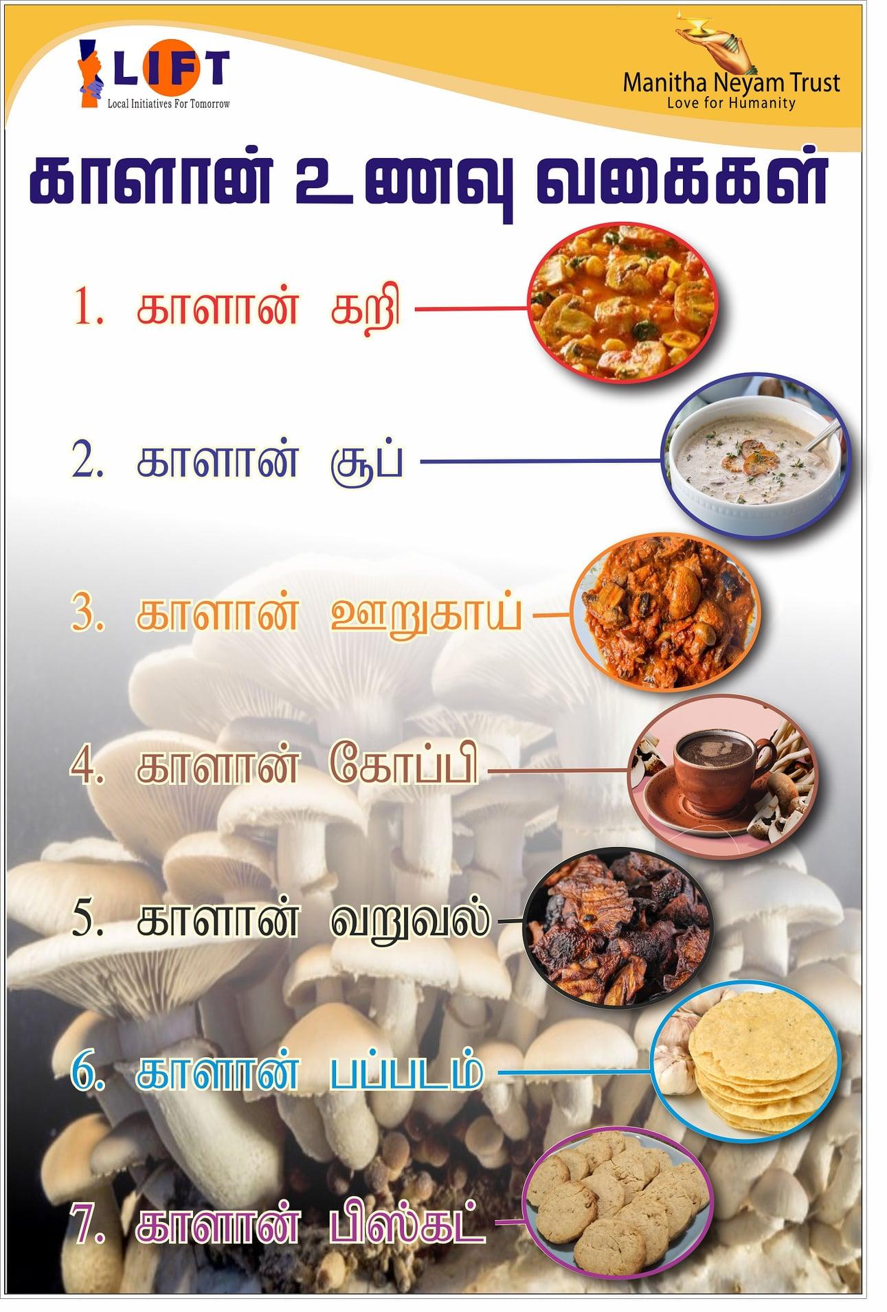 Mushroom Benefits 3
